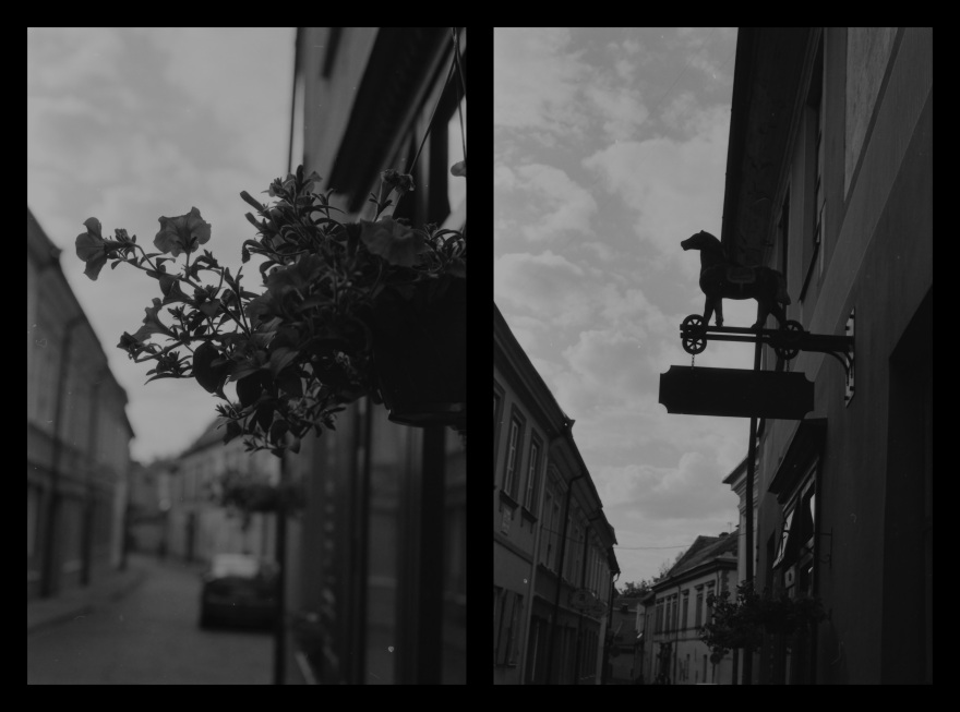 And The Pallor Disappear-Final-Diptych10