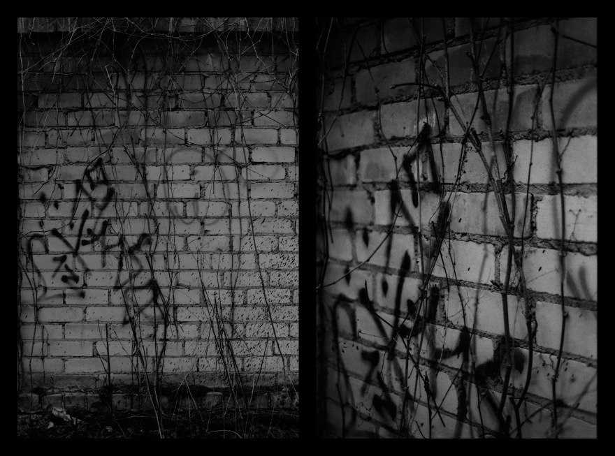 And The Pallor Disappear-First One-Diptych04