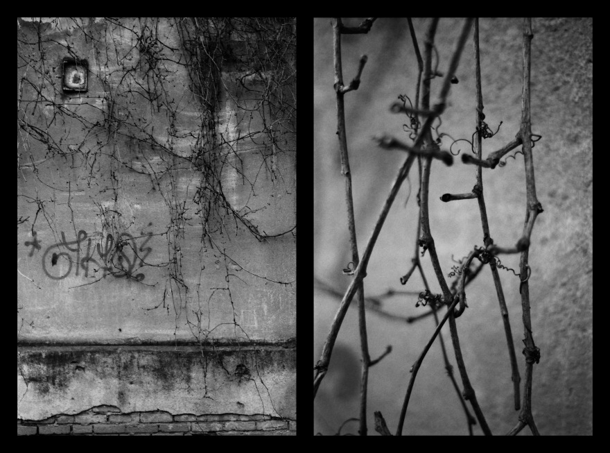 And The Pallor Disappear-First One-Diptych09