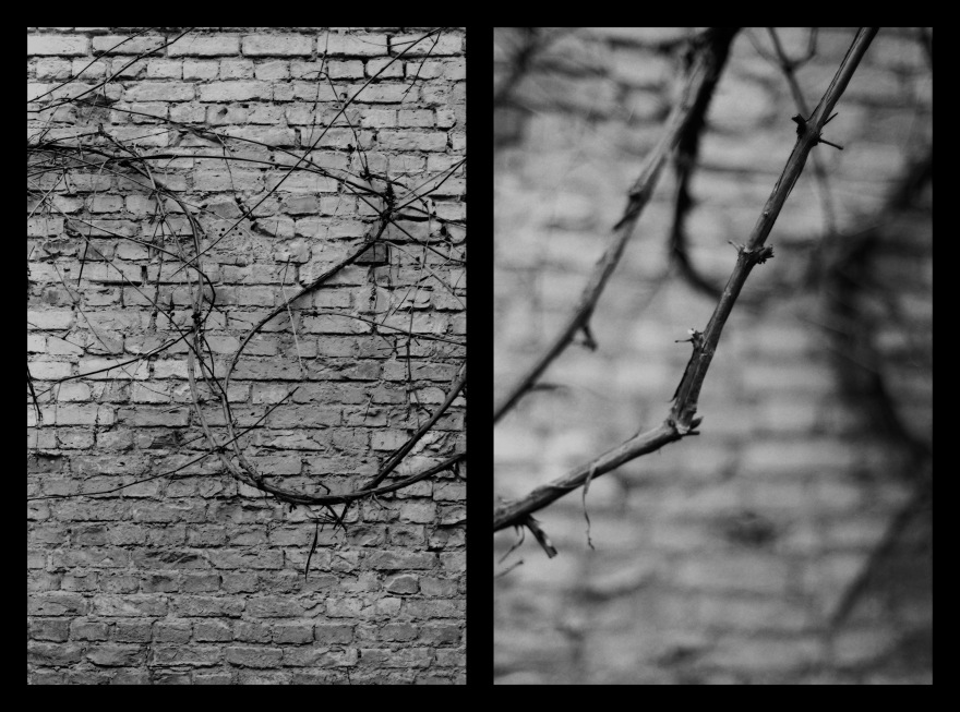 And The Pallor Disappear-First One-Diptych10