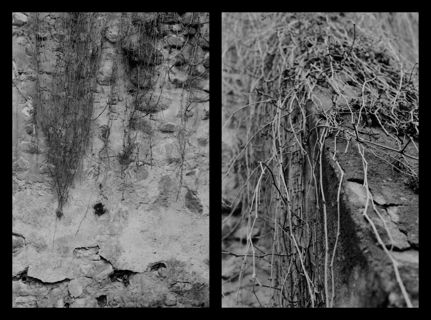 And The Pallor Disappear-First One-Diptych11