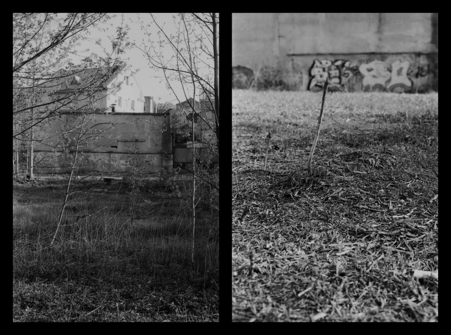 And The Pallor Disappear-Second One-Diptych04