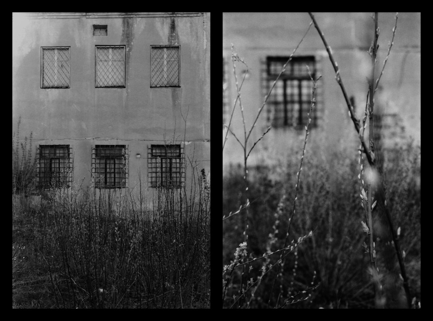 And The Pallor Disappear-Second One-Diptych05