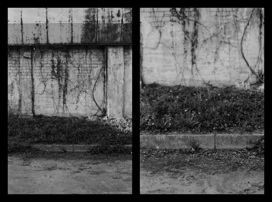 And The Pallor Disappear-Second One-Diptych06